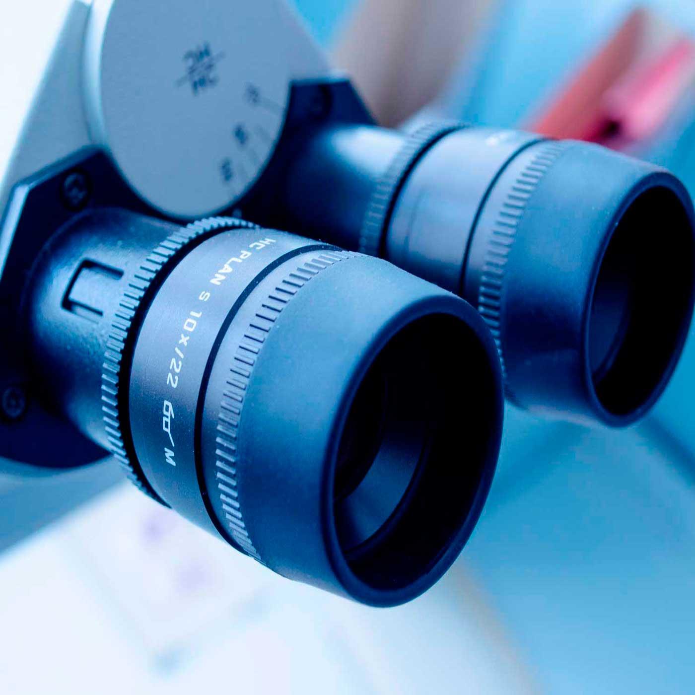 Image: Microscopía e histología